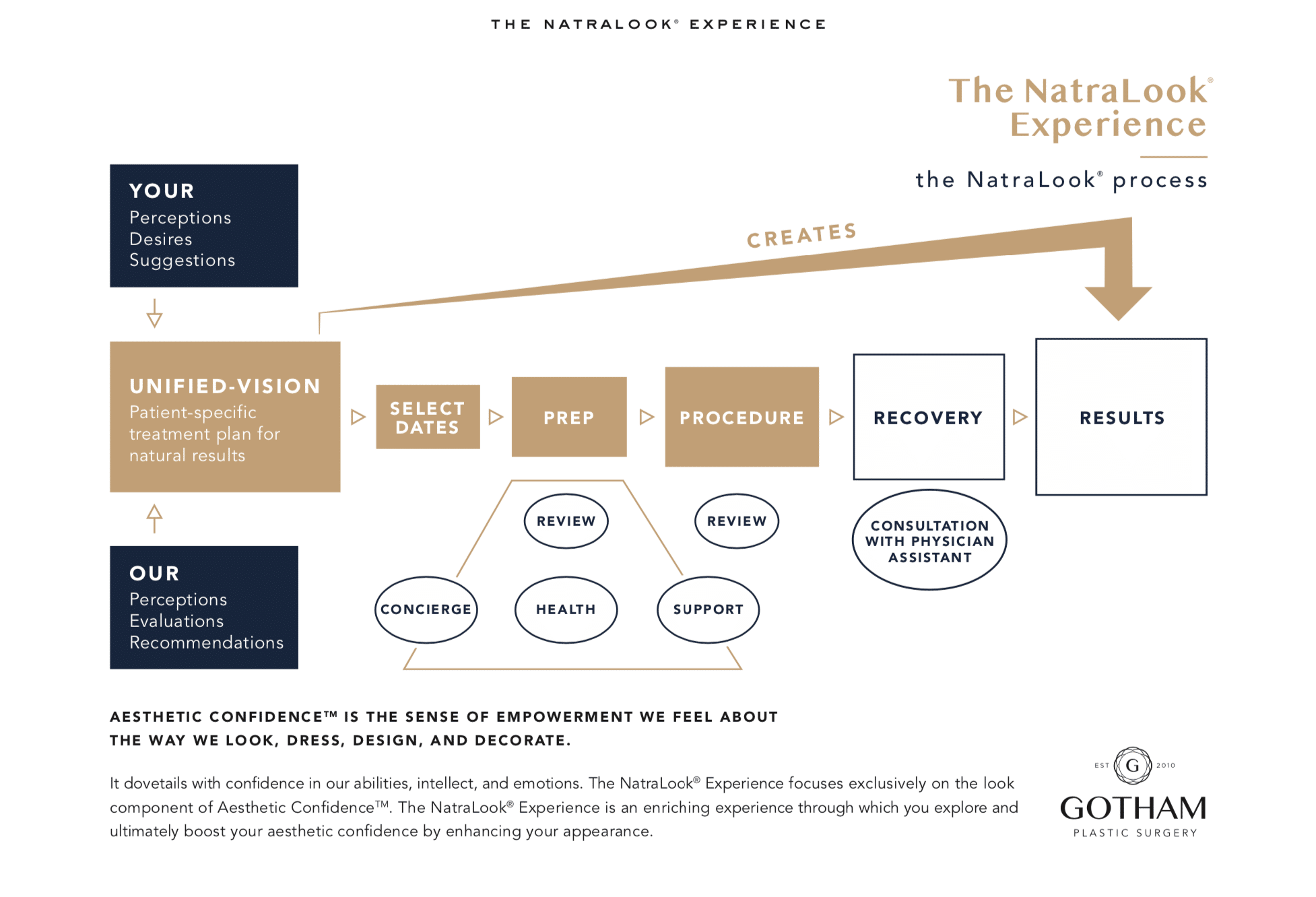 rhinoplasty natralook diagram explaining how Dr. Philip Miller performs a rhinoplasty in new york